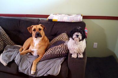 Kaya & Fiona, Louisville